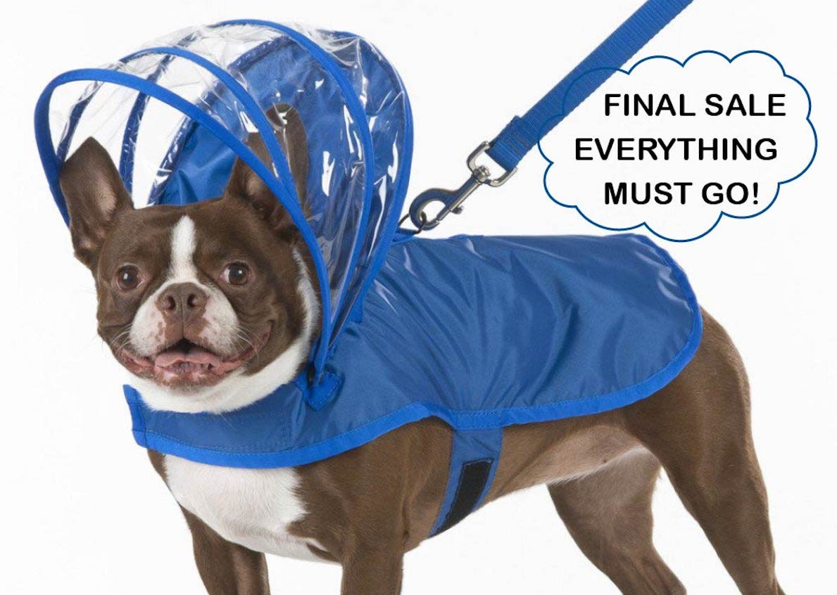 Royal Blue Dog Raincoat