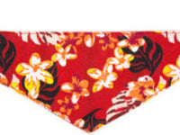 Dog Bandana -  Hawaiian Red