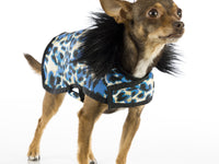Blue Leopard Posh Puppy Coat