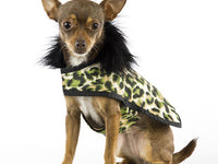 Green Leopard Posh Puppy Coat