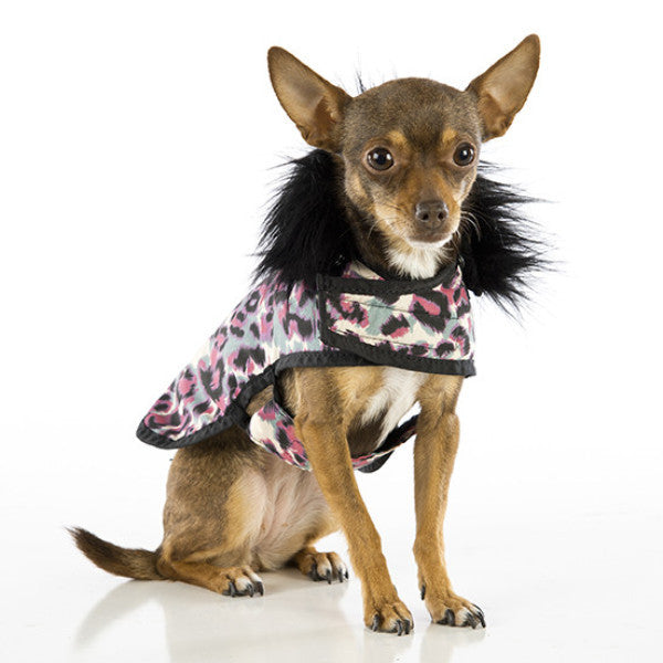 Selling designer dog clothes and accessories are only part of the Posh Puppy Boutique tale. We were started as a family business by a mom who saw her daughters dressing up their Chihuahuas. Today, the Posh Puppy Boutique provides an online location w show more.