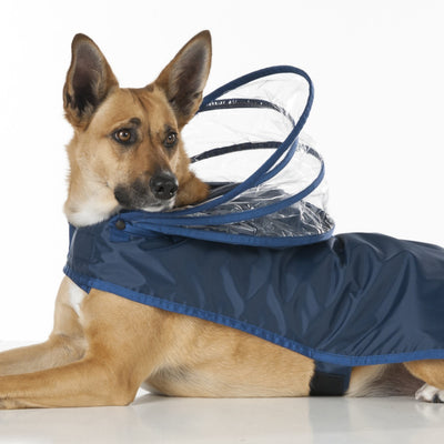 Navy Blue Dog Raincoat