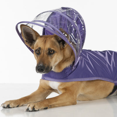 Purple Dog Raincoat