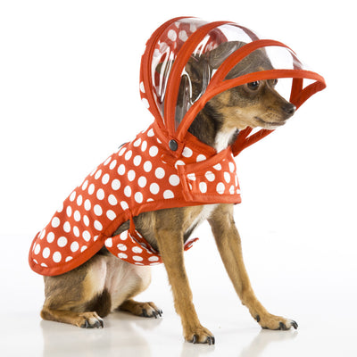 Red & White Polka Dot Dog Raincoat