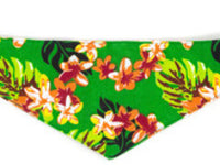 Dog Bandana - Hawaiian Green
