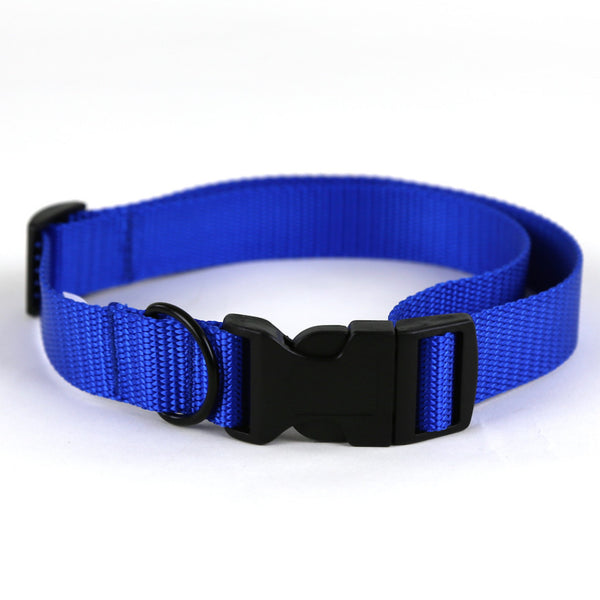 Royal Blue Dog Collar