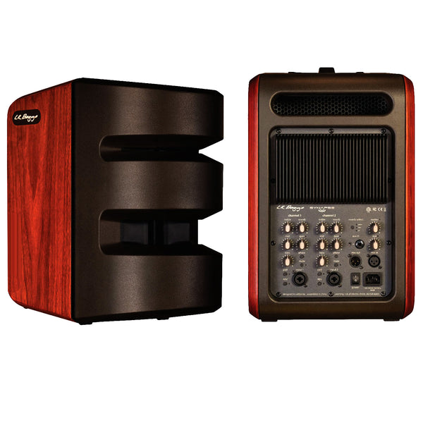 LR BAGGS SYNAPSE 500 Watt Personal Portable PA System