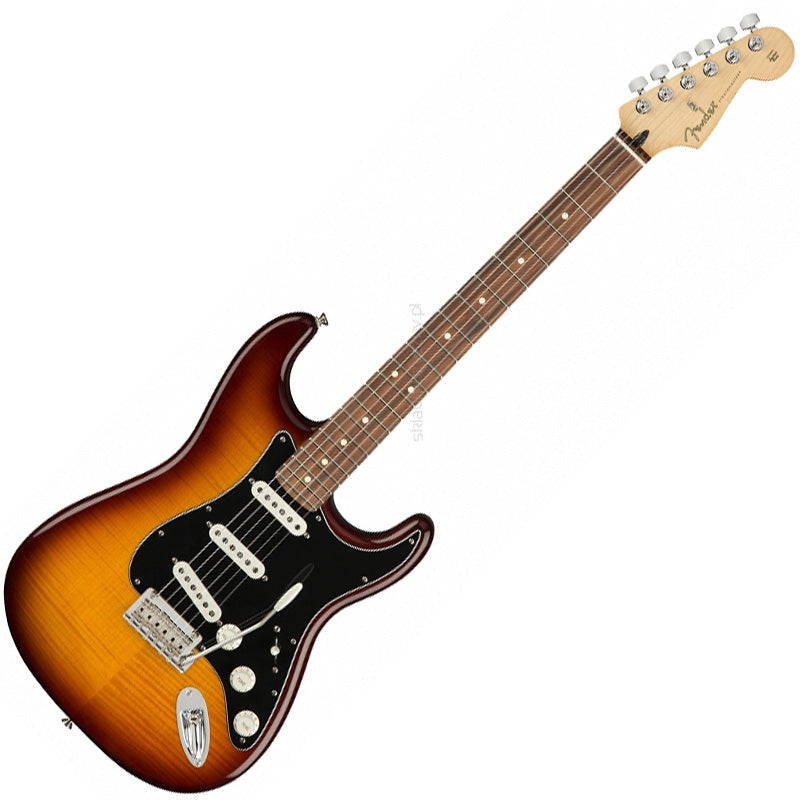 Fender 0144553552 Player Stratocaster Electric Guitar Plus Top Pau Ferro in Tobacco Sunburst