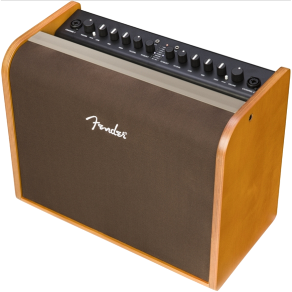 Fender 2314000000 Acoustic 100 Watt Acoustic Guitar Amplifier
