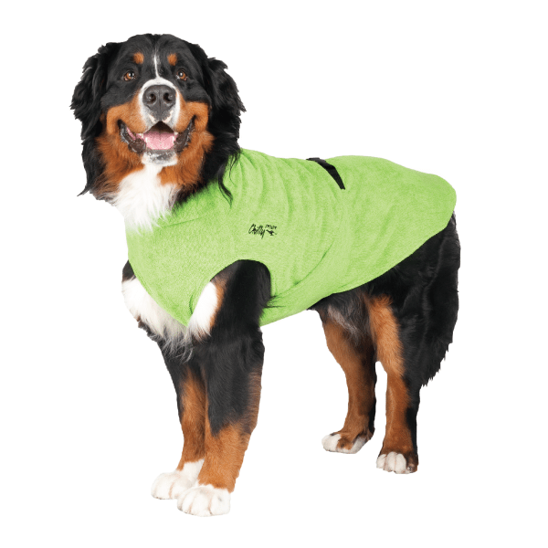 Chilly Dogs Soaker Robe - Happy Tails Natural Treats