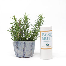 Eco Mutt Dry Dog Shampoo