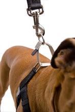 "2 Hounds - Lead for Freedom ""No Pull"" Harness - Happy Tails Natural Treats"