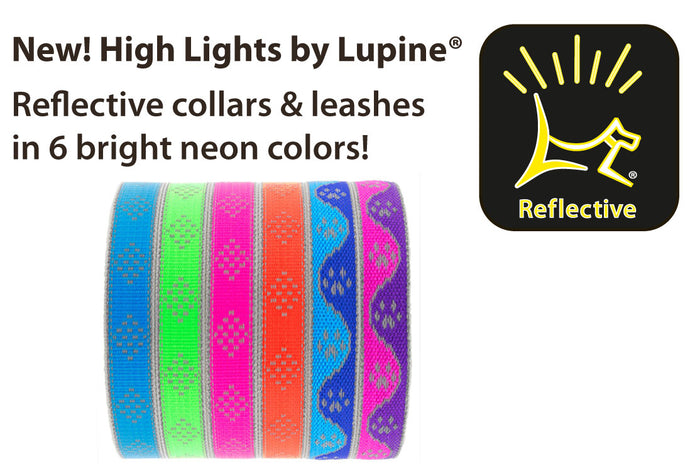 Lupine Reflective Collars & Lead