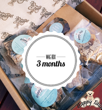 Wag Box 3 month subscription ( Treats only)