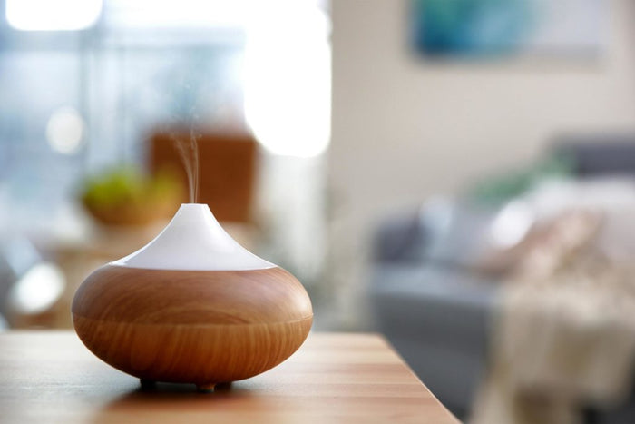 How to Choose From the 4 Different Types of Diffusers
