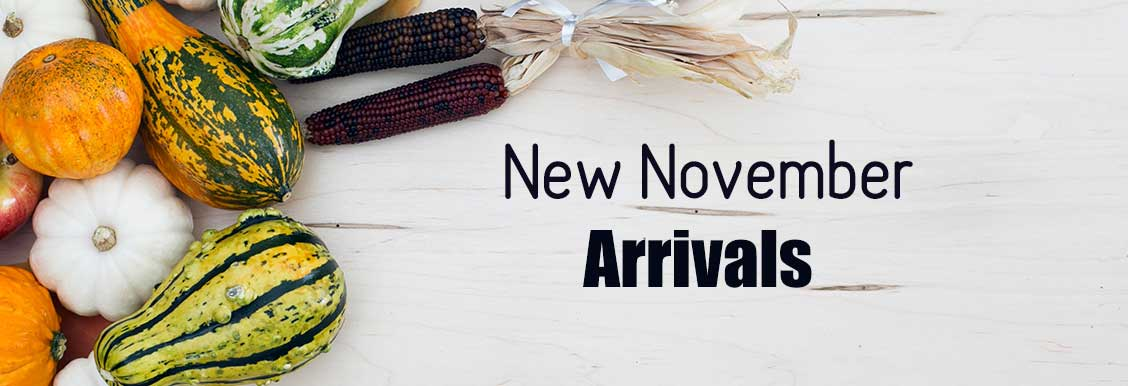 New Arrivals Means New Deals in November