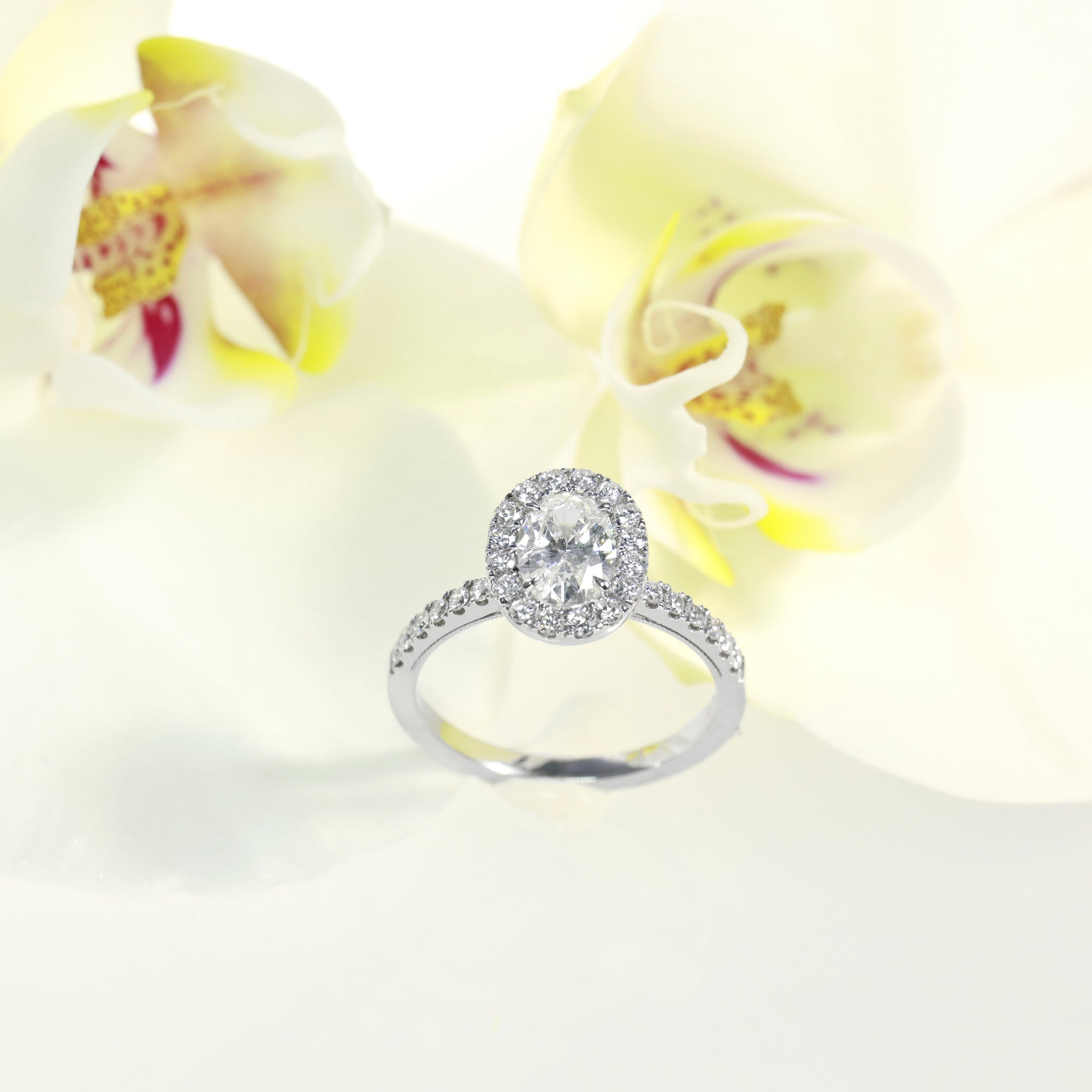 14k white gold diamond engagement ring featuring a 0.84 carat oval diamond center and round brilliant diamond halo and side stones weighing a total of 0.45 carats. Total diamond weight: 1.29ct