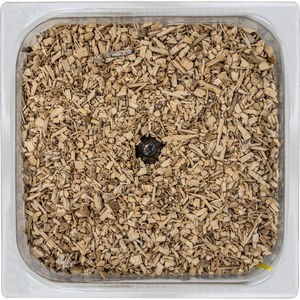 Grow It Yourself Square Planter Growth Form for mushroom material