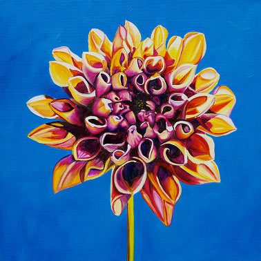 """Dahlia #2"" Large Matted Print"