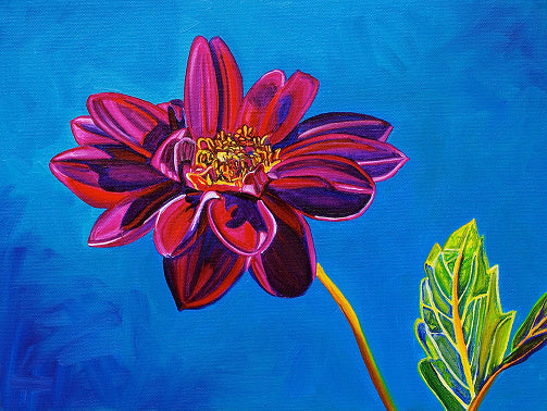 """Dahlia #3"" Large Matted Print"