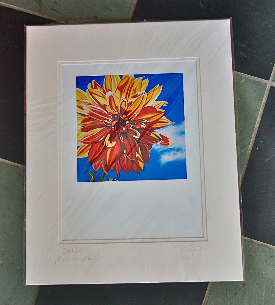 """Dahlia (from my garden)"" Large Matted Print"