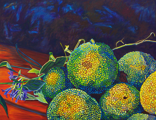 """Hedge Apples"" Large Matted Print"