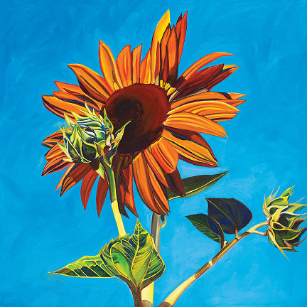 """Sunflower #5"" Large Matted Print"