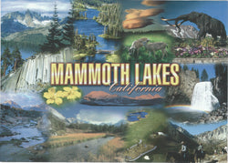 5X7 Mammoth Lakes Collage Postcard