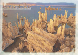 5X7 Mono Lake Salt Rocks Postcard