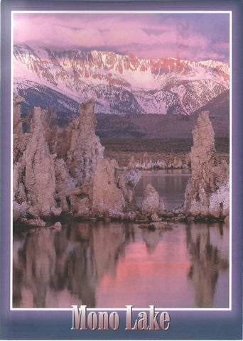 5X7 Mono Lake Winter Postcard