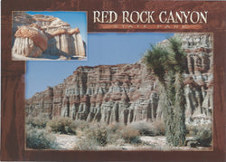 5X7 Red Rock Canyon Park Postcard