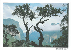 5X7 Yosemite Valley Postcard