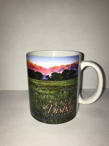 Bishop California Mug