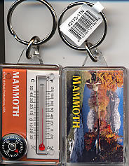 Mammoth Lakes Scenery Keychain