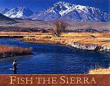 Fish The Sierra Magnet