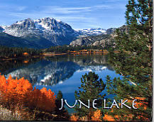 June Lake Scenery Magnet