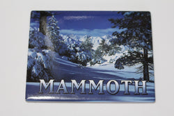 Mammoth Snow Magnet