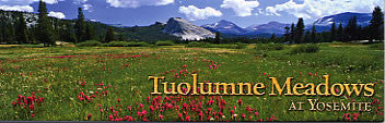 Tuolumne Meadows Magnet-QTY=10