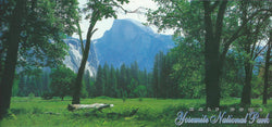 Panoramic Yosemite Half Dome Postcard