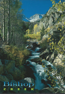 Bishop Creek Stream Postcard-QTY=50