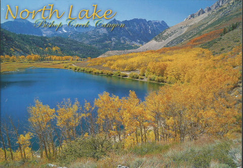 Bishop North Lake Postcard-QTY=50