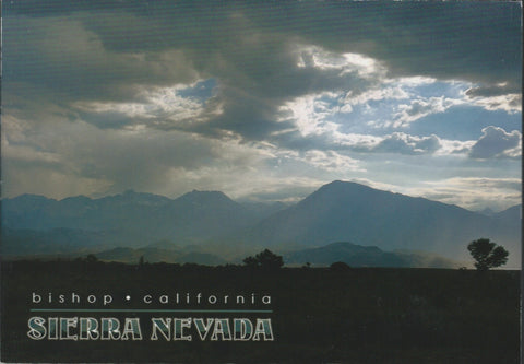 Bishop Sierra Nevada Postcard-QTY=50