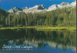 Bishop Canyon Creek Postcard-QTY=50