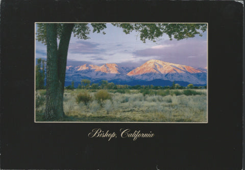Bishop California Postcard-QTY=50