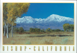 Bishop Mountain Range Postcard-QTY=50