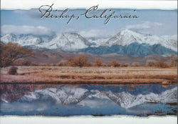 Bishop Reflection Postcard-QTY=50