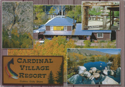 Bishop Cardinal Village Resort Postcard-QTY=50