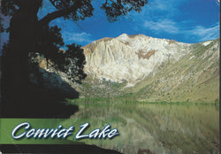 Convict Lake Mountain Postcard