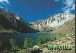Convict Lake Scenery Postcard