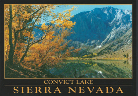 Convict Lake Fall Postcard-QTY=50